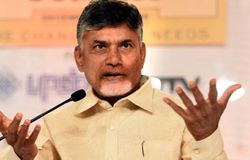 cm chandrababu naidu on bjp ysrcp alliance