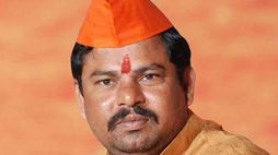 goshamahal mla raja singh sensational comments on telangana bjp chief bandi sanjay ksp