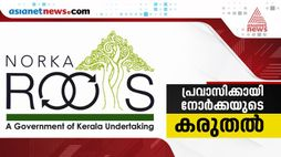 norka roots to give help for malayalies in abroad