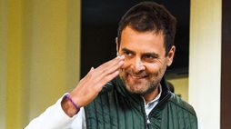 the candidature ship of rahul gandi will be decide today
