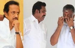 who win 22 assembly election in tamilnadu
