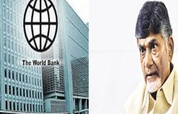 world bank babu
