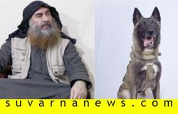 baghdadi with dog