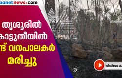 forest fire two watchers dead in thrissur
