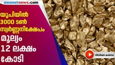 3000 tonnes of gold deposit found in Sonbhadra UP
