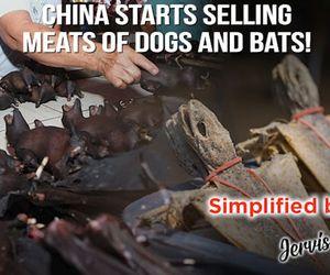 Even as world battles coronavirus, China restarts selling bats!