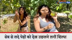 bollywood actress shilpa shetty who was in manali video gose viral kpv