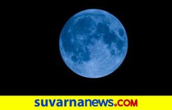 <p><strong>Blue Moon</strong></p>