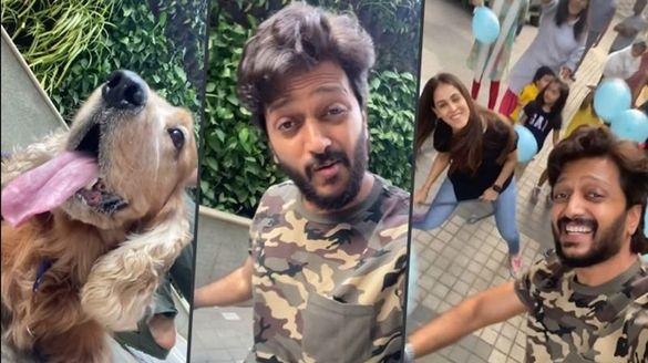 Riteish Deshmukh, Genelia D'Souza joins the 'Pawri' clan; celebrates dog Flash's birthday, Watch video-SYT