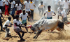 Villagers Pelt Stones At Police Team Trying To Stop Jallikattu In tamilnadu