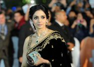 Sridevi Boney Kapoor Rare Photos