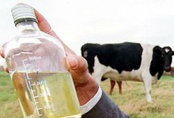 Will 'cow urine hand sanitizer' on Amazon protect you from coronavirus?